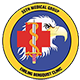 Logo: 55th Medical Group - Offutt Air Force Base